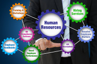 Evolution HR Servcies from outsourced HR
